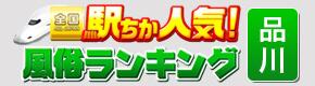 駅ちか人気風俗ランキングの品川回春堂掲載ページ